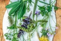 Otisky květin_04
